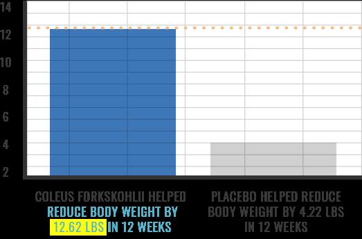 xentermine - coleus forskohlii weight loss